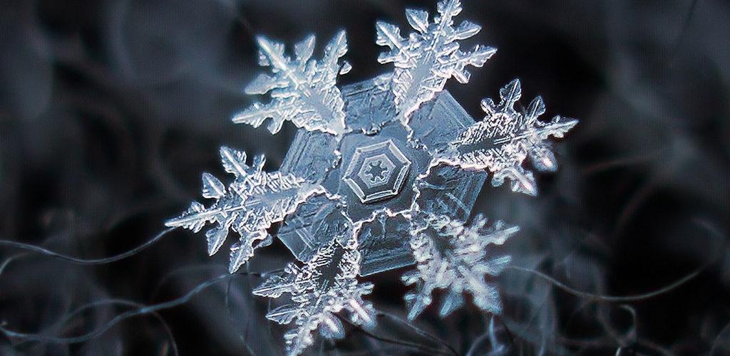 23 уникални фотографии на снежинки, които ще ви изумят