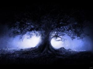 blue tree wp