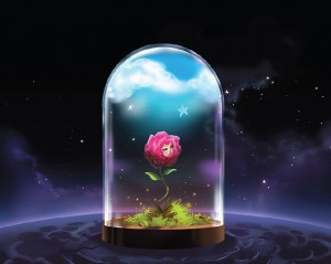Rose - Little Prince